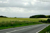 Road and Fields at Cheesefoot Head